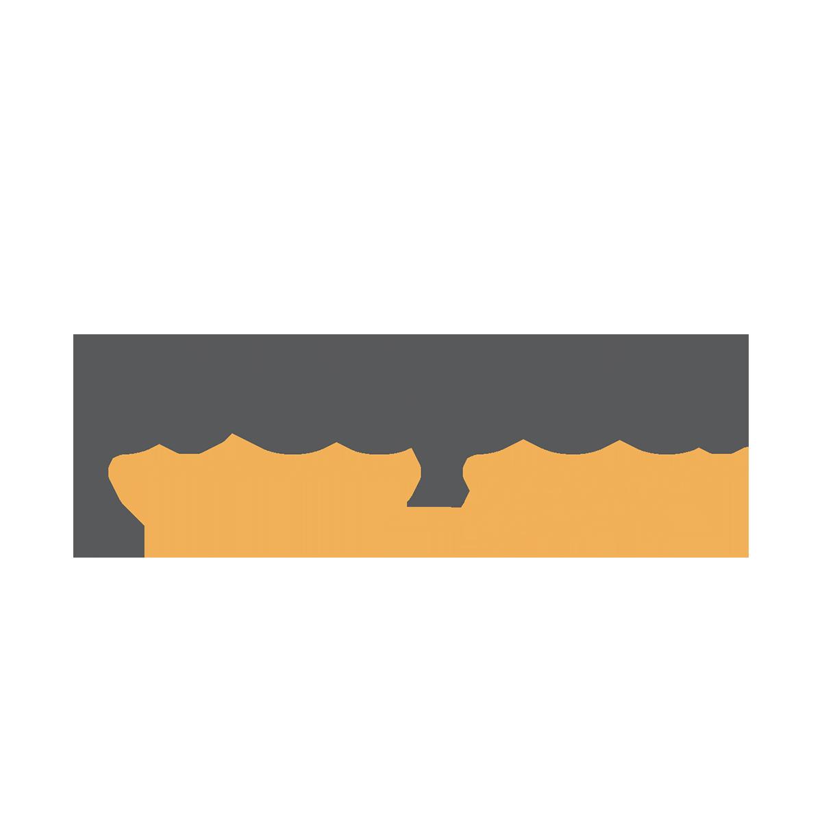 logo PROSPECT.GURU